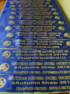 Autumn Show sashes